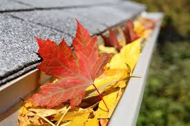 fall leaves and gutter