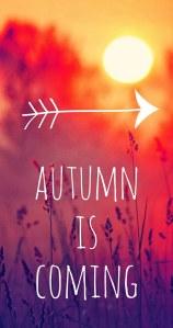 autumn-fall-guote-leaves-Favim.com-2112986